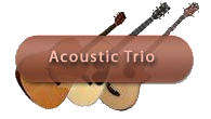 acoustic trio long island